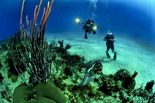 kusza podwodna